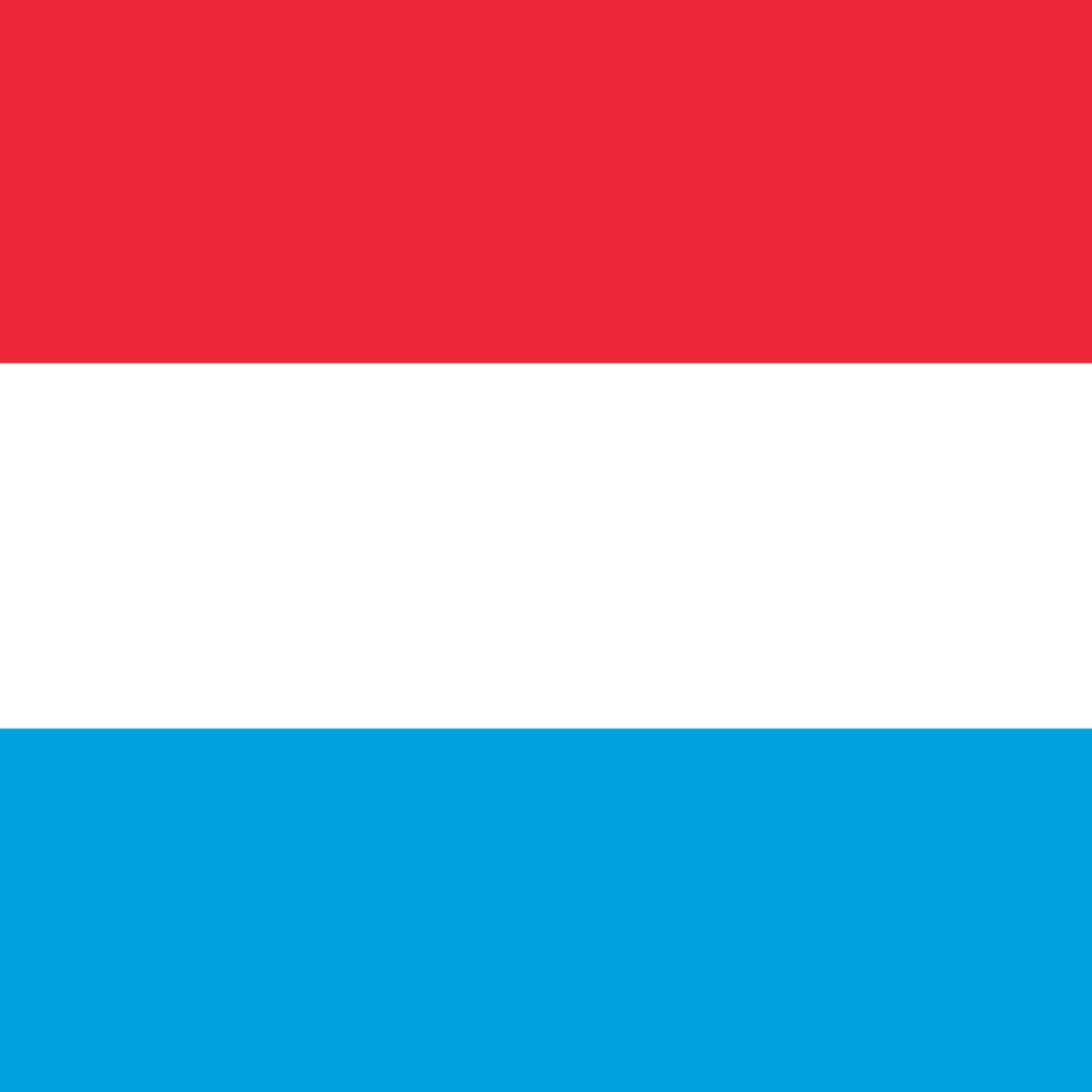 Honorary Consulate of Luxembourg (Alicante)